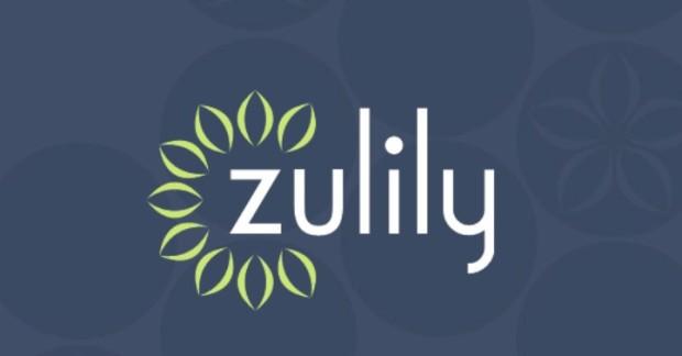 zulily-620x324